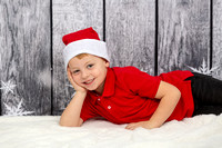 White Family Holiday Portraits_0011
